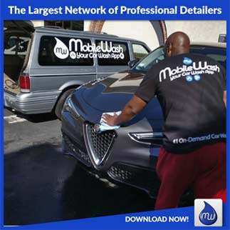 largest network professional detailers